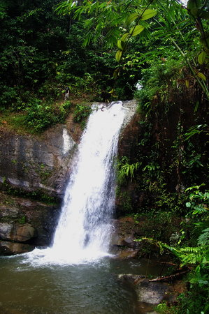 Kuching, Malezya: Mabi Waterfall