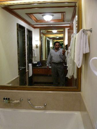 Wildflower Hall, Shimla in the Himalayas: Me, taking my own photo in the bathroom