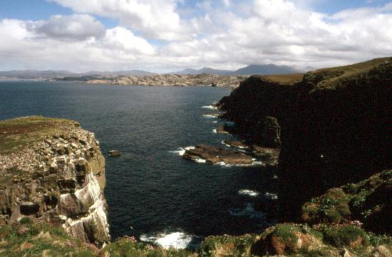 Scourie, UK: Handa Island - cliffs