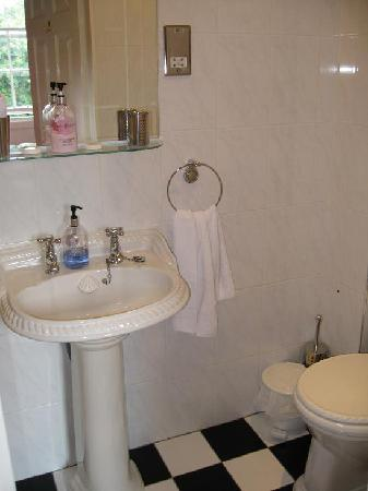 Abercorn Guest House : The bathroom