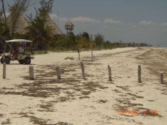 Baktun Hotel: plage de Holbox