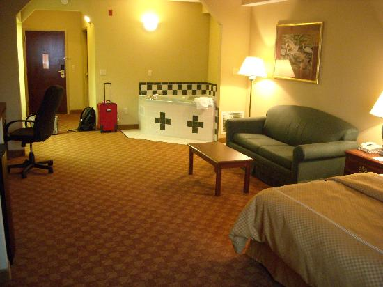 Comfort Suites Airport: View from window looking toward the door
