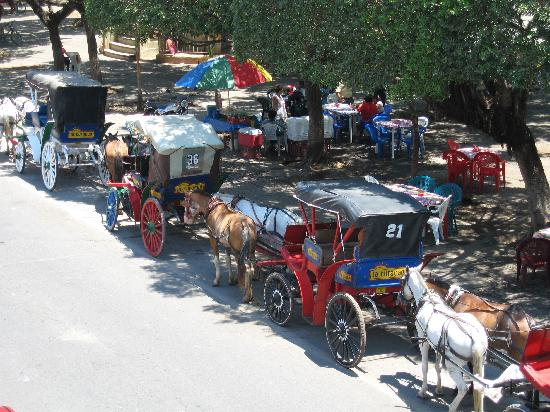 Hotel Plaza Colon: View of  horse & carriages that line the street in front of the hotel