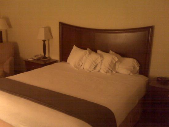 Brandon, FL: Bedding - 4 comfy pillows