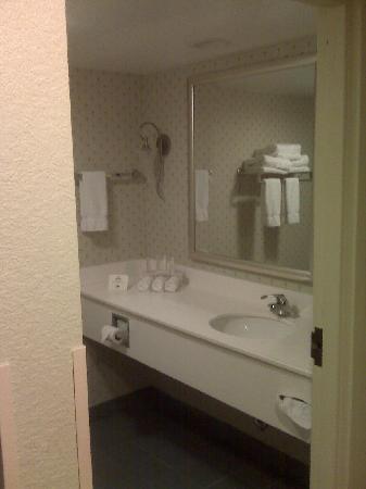 Brandon, Flórida: Bathroom - Water pressure like a firehose!