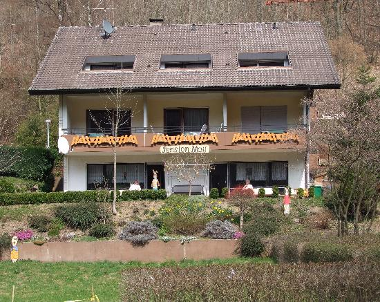 Elzach-Oberprechtal, Alemania: Pension Matt