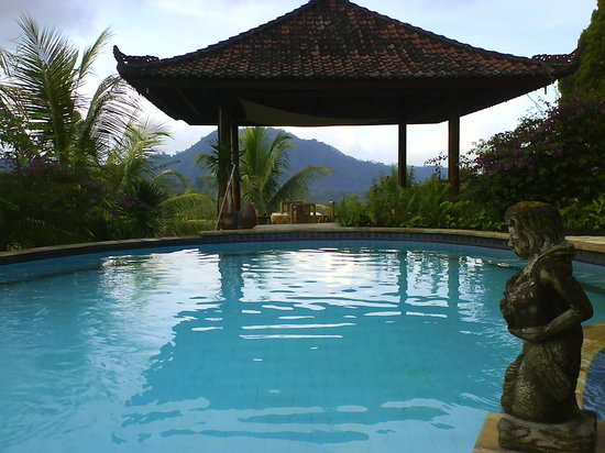 Cepik Villa: The pool