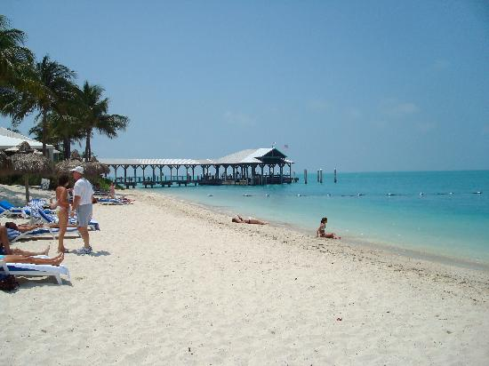 Picture Of Margaritaville Key West