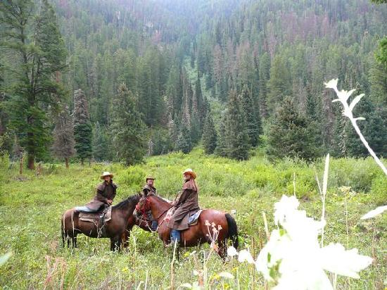 Spotted Horse Ranch: Little Horse Creek Ride