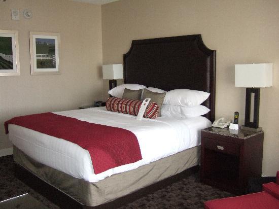 Hyatt Regency Lexington: King Size Bed2