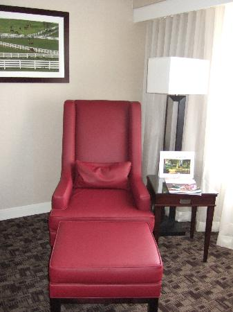 Hyatt Regency Lexington: Comfy Chair