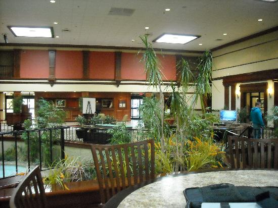 Doubletree by Hilton Hotel Detroit-Dearborn: Hotel Lobby. Spacious, comfy and inviting.