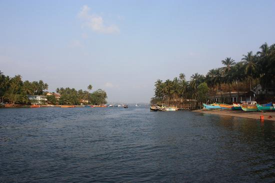 Casa Candolim: Dolphin boat trip