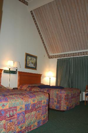 Econo Lodge Inn & Suites: Basic room photo
