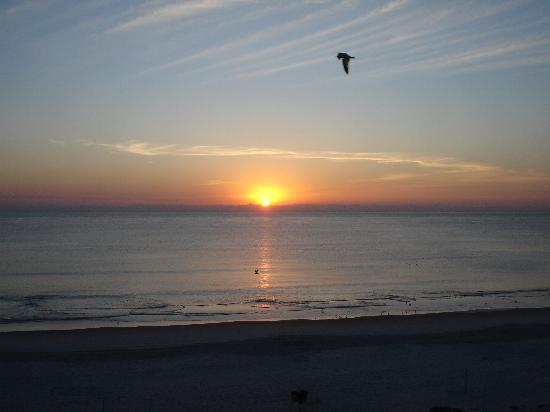 Daytona Inn Seabreeze: sunrise view!