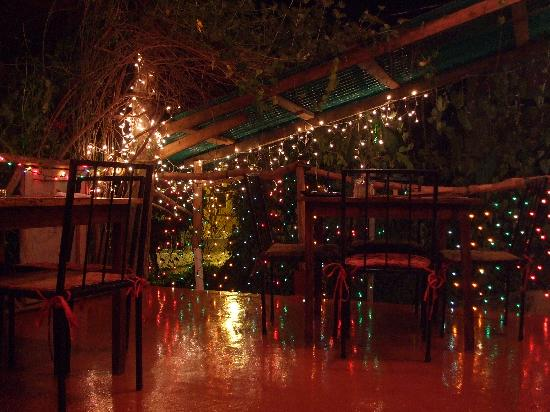Salsa Kitchen Tapas Restaurant: Bild 1