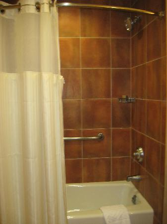 Hilton Santa Fe Buffalo Thunder: shower