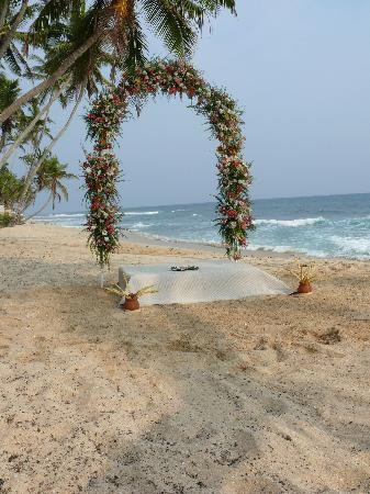 The Frangipani Tree by Edwards Collection: Wedding on the beach