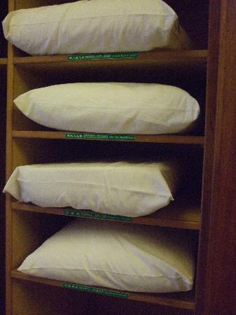 Yu Hotspring Resort: choice of pillows in the room
