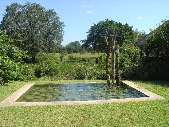 Sabi Sabi Bush Lodge: view from lodge