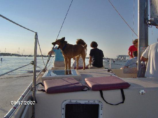The Island Home Inn: Skipper on the yacht  from Aug 2007