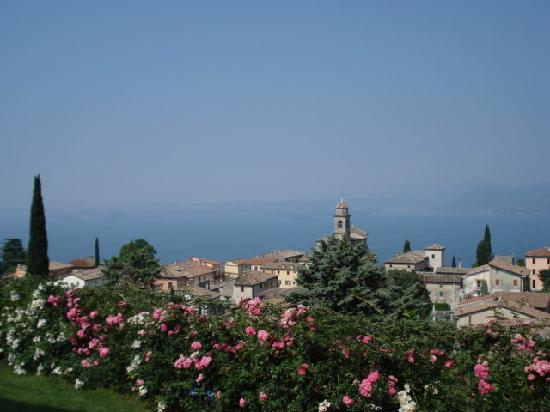 Le Gemme di Artemisia : Flowers in bloom and a veiw of Lake Garda