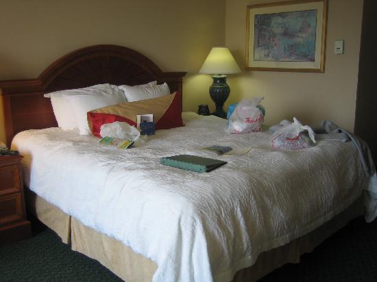 Hilton Garden Inn Jacksonville Airport: King Bed