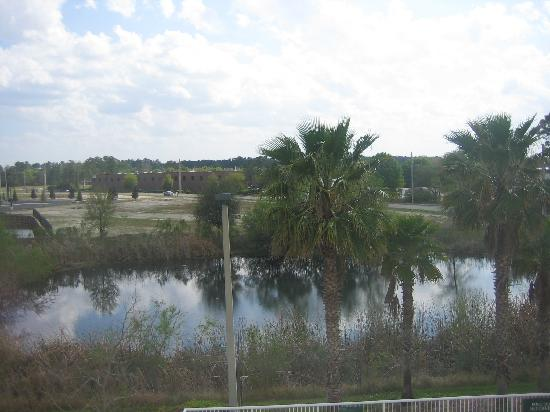 Hilton Garden Inn Jacksonville Airport : View from our room