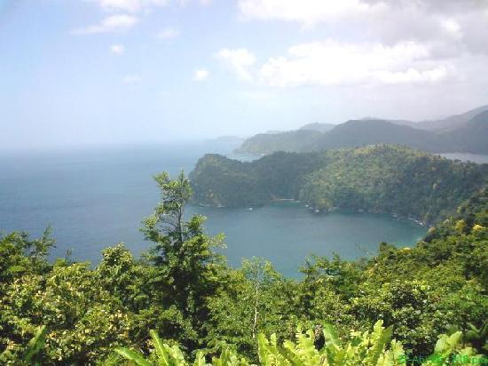 Maracas Bay: camino a maracas :)