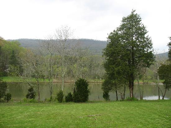 Lookout Lake Bed and Breakfast : The view