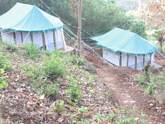 Coorg Planter's Camp: Pretty tents on a slope