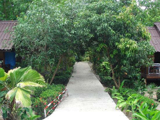 ซิลเวอร์แซนด์บีช : Walk from the hotel to the beach