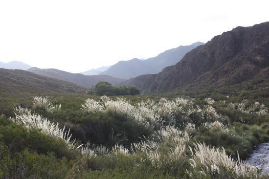 Tierras Blancas Ecotourism: Scenic view within the estancia