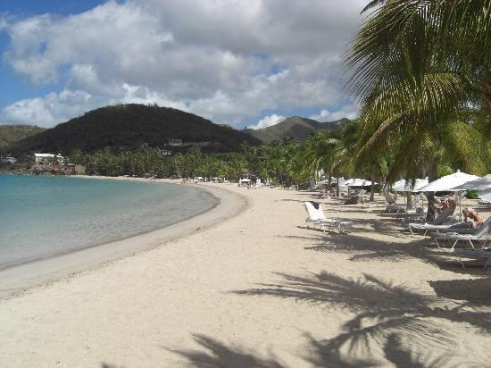 Carlisle Bay Antigua: Spiaggia/beach