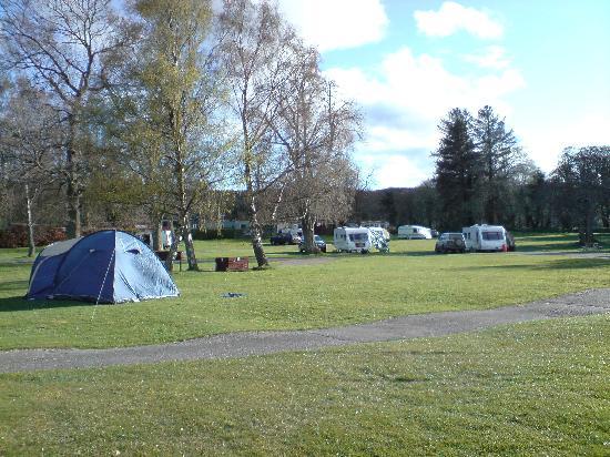 Bunchrew Caravan Park: Campsite