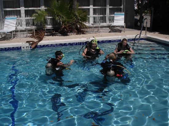 Amy Slate's Amoray Dive Resort: We do scuba lessons- pool less than it's cleanest