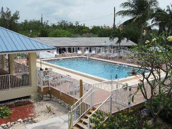 Reef Resort: This is the pool area..brand new!