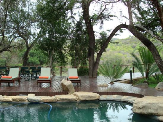 Amakhosi Safari Lodge: Pool