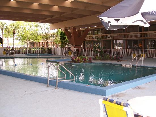 Champions World Resort: the heated pool with cover just 20 ft  from our room