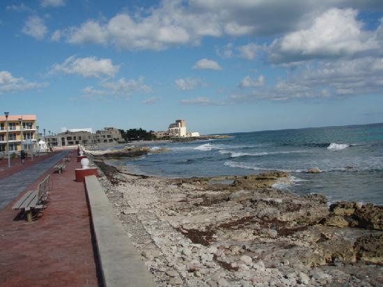 La Vida Dulce Casitas: Malecón along the upper north east side of the island. Great for morning walks.