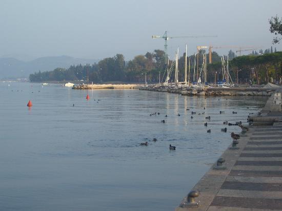 Albergo Tecla: Lungolago a 20 metri dal Tecla.