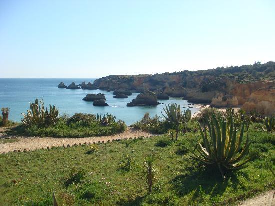 Casa Tres Palmeiras: Beach View