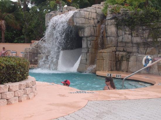 Comfort Inn Orlando/ Lake Buena Vista: Pool