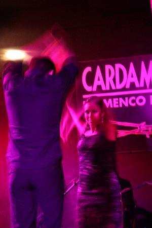 Cardamomo Tablao Flamenco: Flamenco