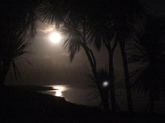Torann Na Dtonn: Moonlight
