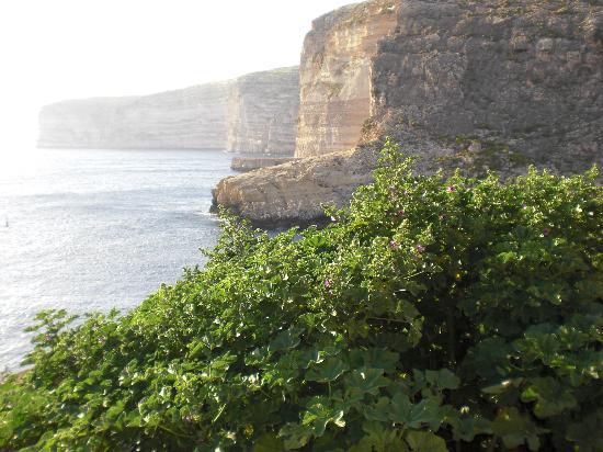 San Andrea Hotel: Xlendi cliffs