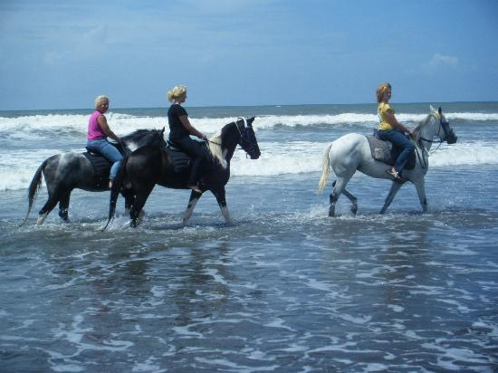 Image result for horse riding yeh gangga bali