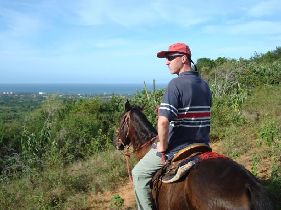CabaCaribe Horseback Riding: taking in the views