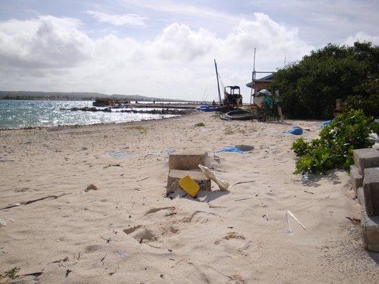 De Palm Tours: Esto es lo menos parecido a una isla paradisiaca