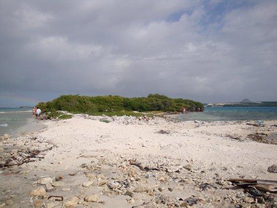 De Palm Tours: Toda una orilla de la isla esta llena de desperdicios y basura